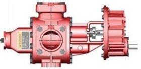 Roper 3648GHBF Pump