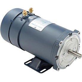 Leeson 12v Dc Motor For Burks Dc 10 Washdown Pump